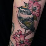 traditional, tattoo, bird. bird tattoo, floral tattoo, tattoo birmingham, modern body art, frances anne faith, tattoos, arm tattoo