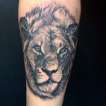 black and grey lion tattoo by Greg Bishop
