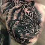 birmingham tattoo, modern body art, birmingham tattoo studio, midlands, west midlands, animal tattoo, custom, custom tattoo, black and grey, black and grey realism, tiger, tiger tattoo